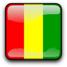 ギニア国旗.jpg